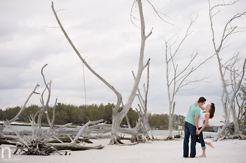 Driftwood Beach Wedding Photos Google Search Wedding Beach Wedding Photos Driftwood Beach Wedding Photos