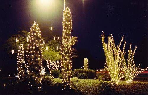 Christmas In Phoenix Arizona Holiday Lights Holiday Christmas Activities
