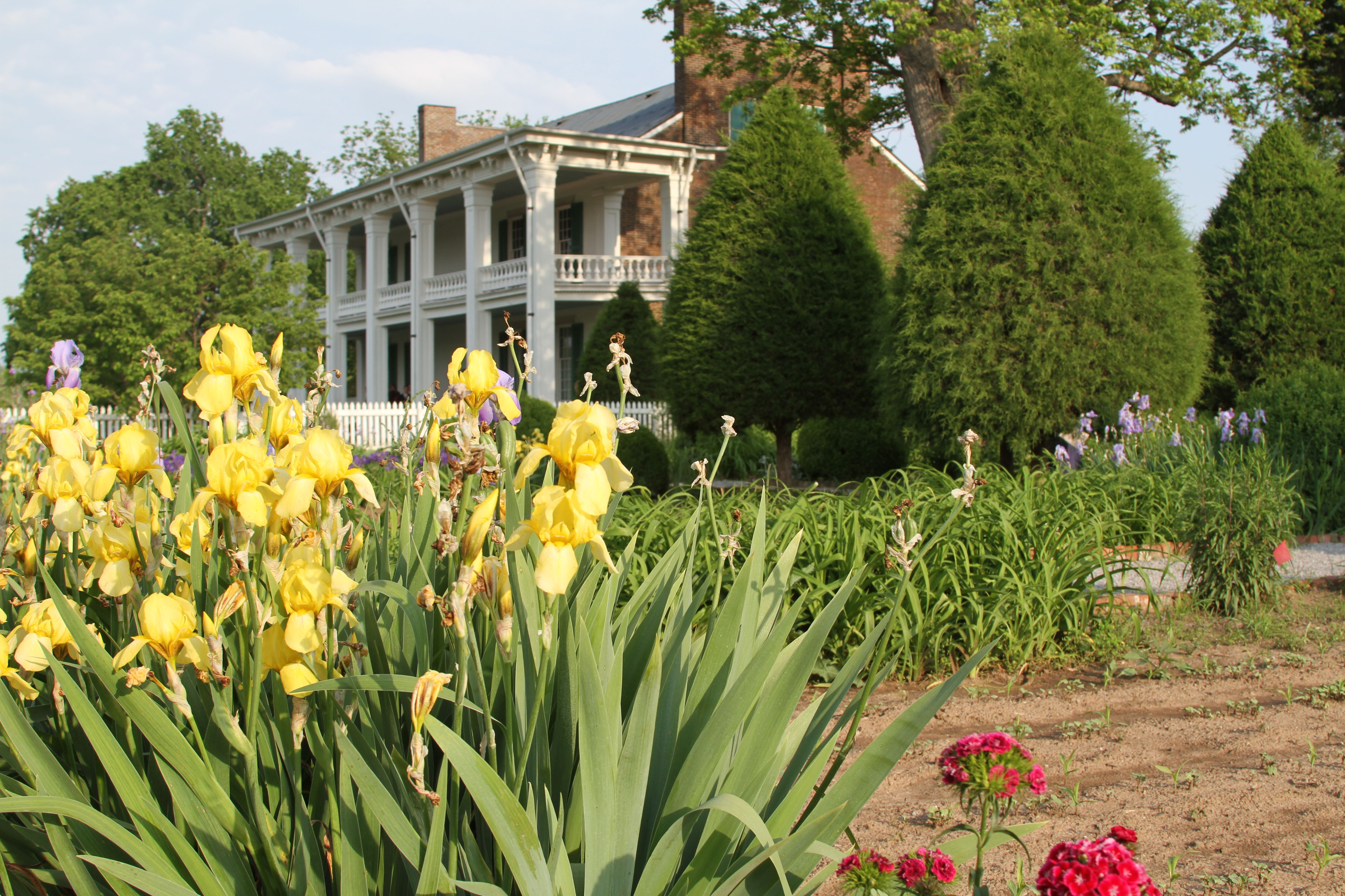 Franklin Tn Southern Cities Favorite Places Nashville Tennessee