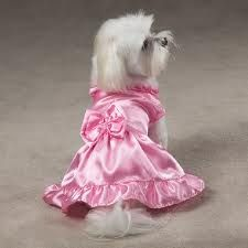 78 Best images about Pretty in Pink Dog Dresses on Pinterest  You ...