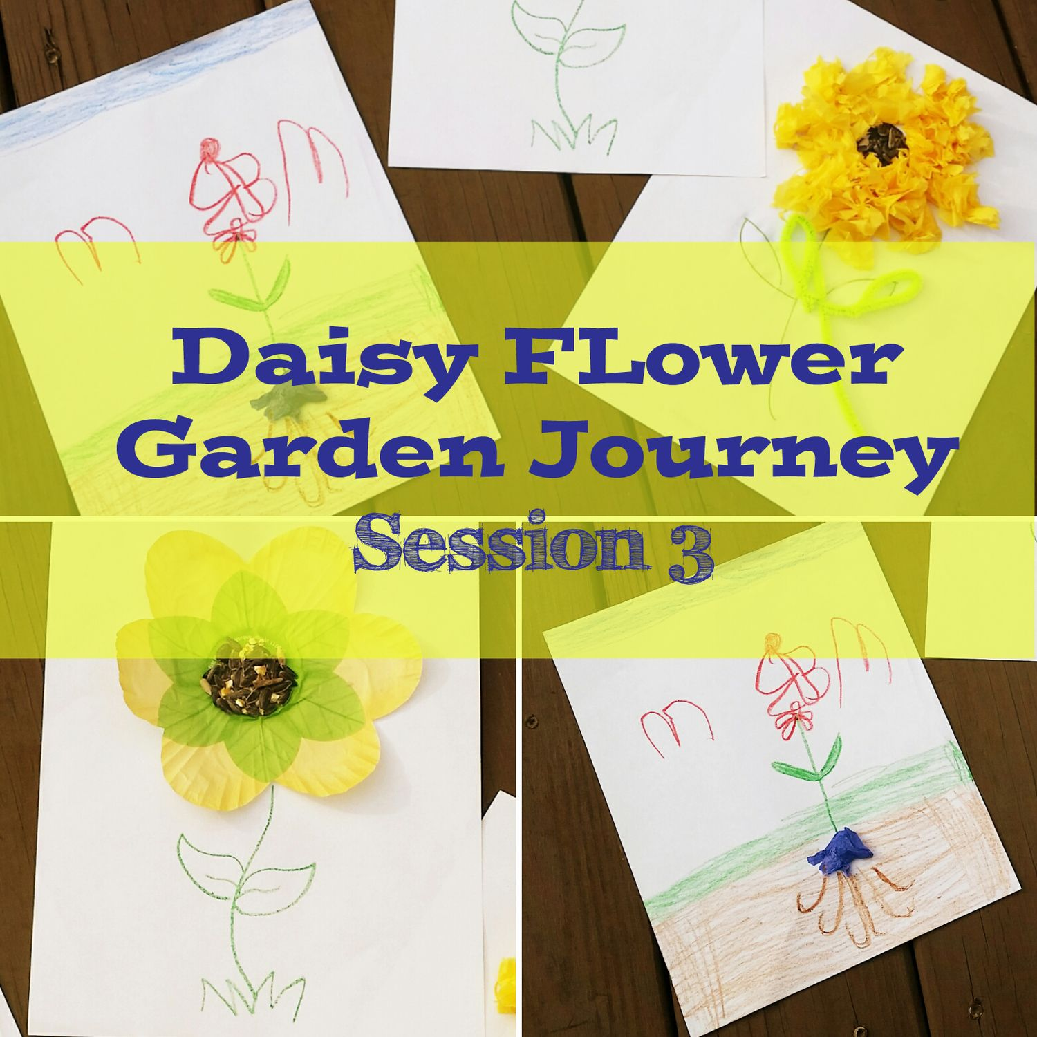 Daisy flower garden journey session 3 daisy girl scouts and daisy daisy flower garden journey session 3 mighty girls rock izmirmasajfo