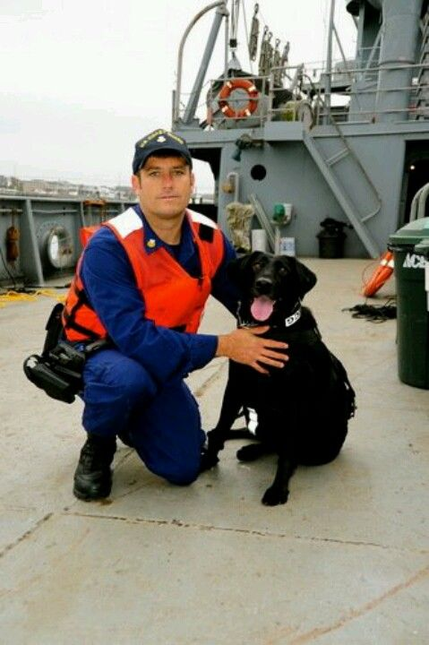 Sirius Is An Explosive Detection Dog W The Maritime Safety