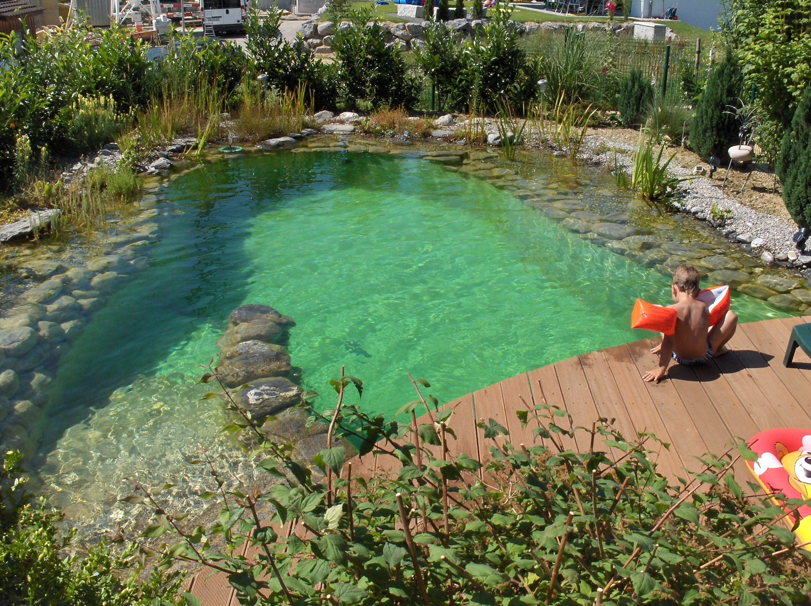 Bild von for Schwimmteich garten