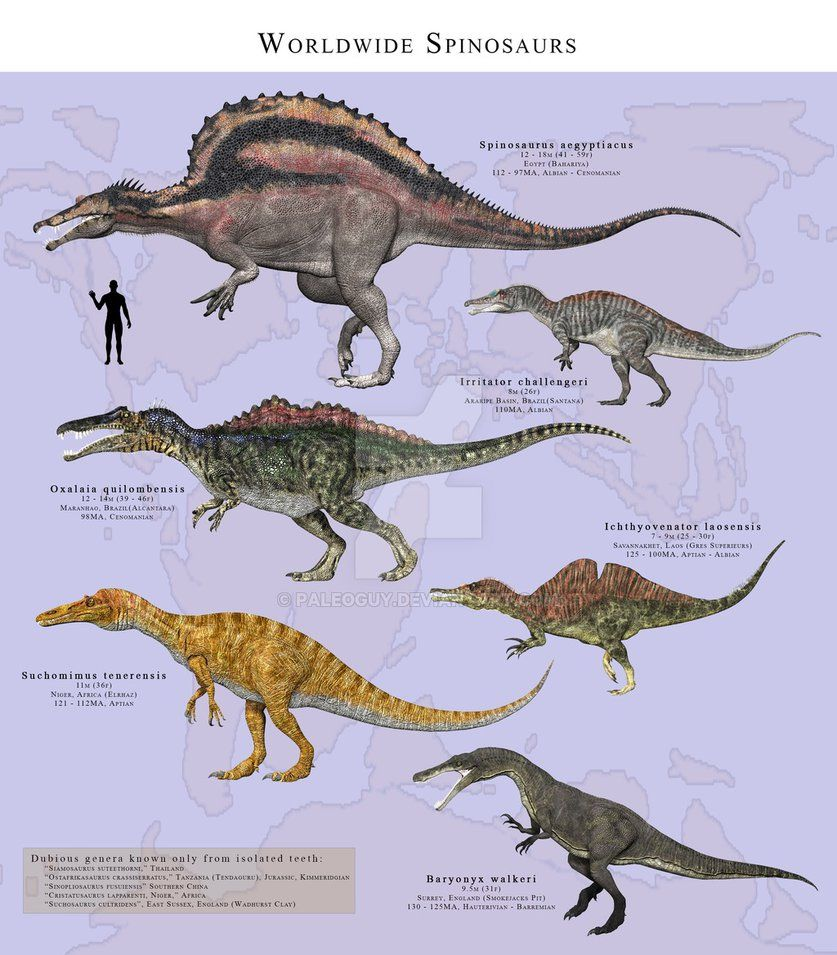 Spinosaurus Aegyptiacus Early To Late Cretaceous 112
