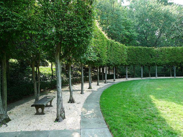 Hornbeam Colonnade at Dumbarton Oaks by pov_steve, via Flickr