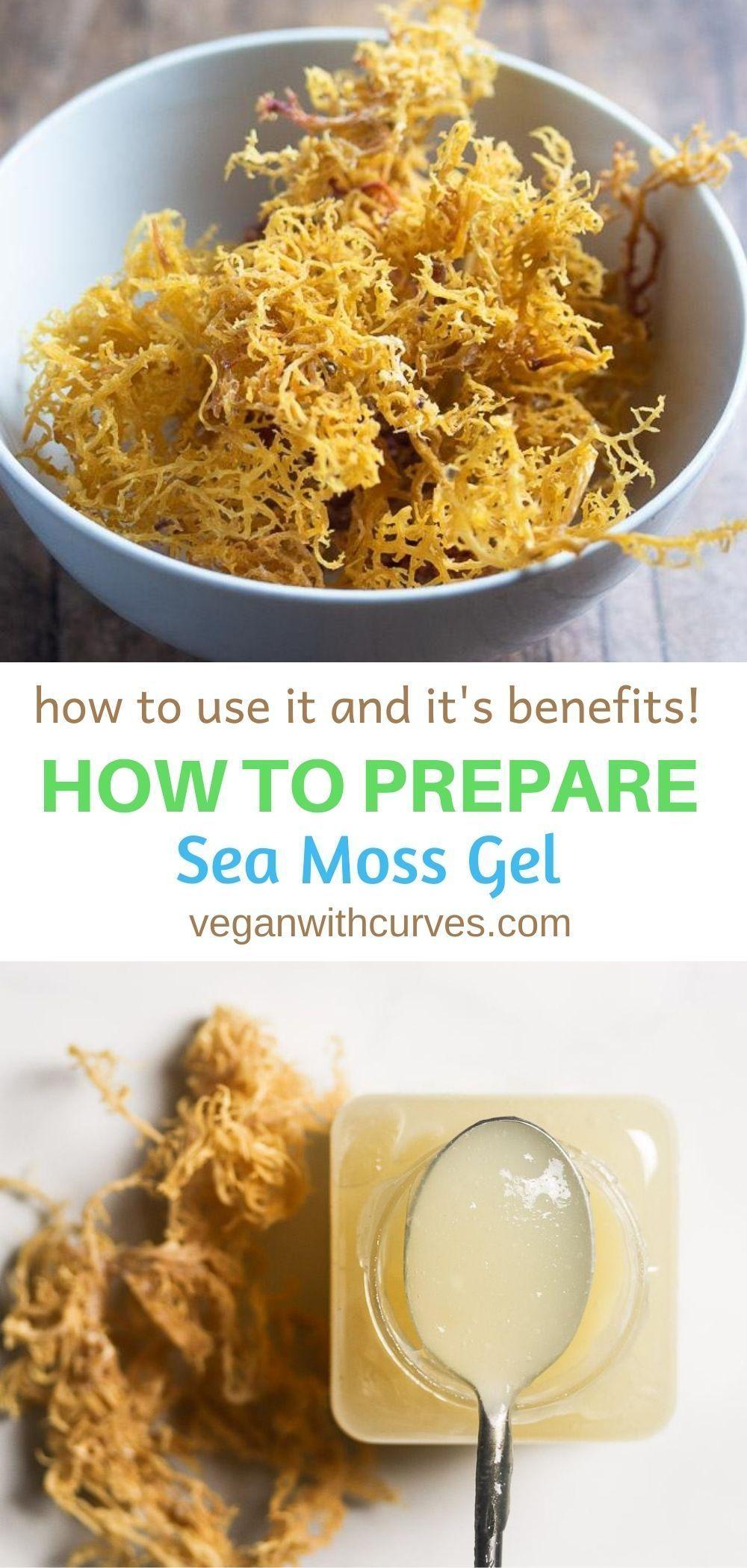 How To Make Sea Moss Gel Sea Moss Whole Food Recipes Healthy Recipes