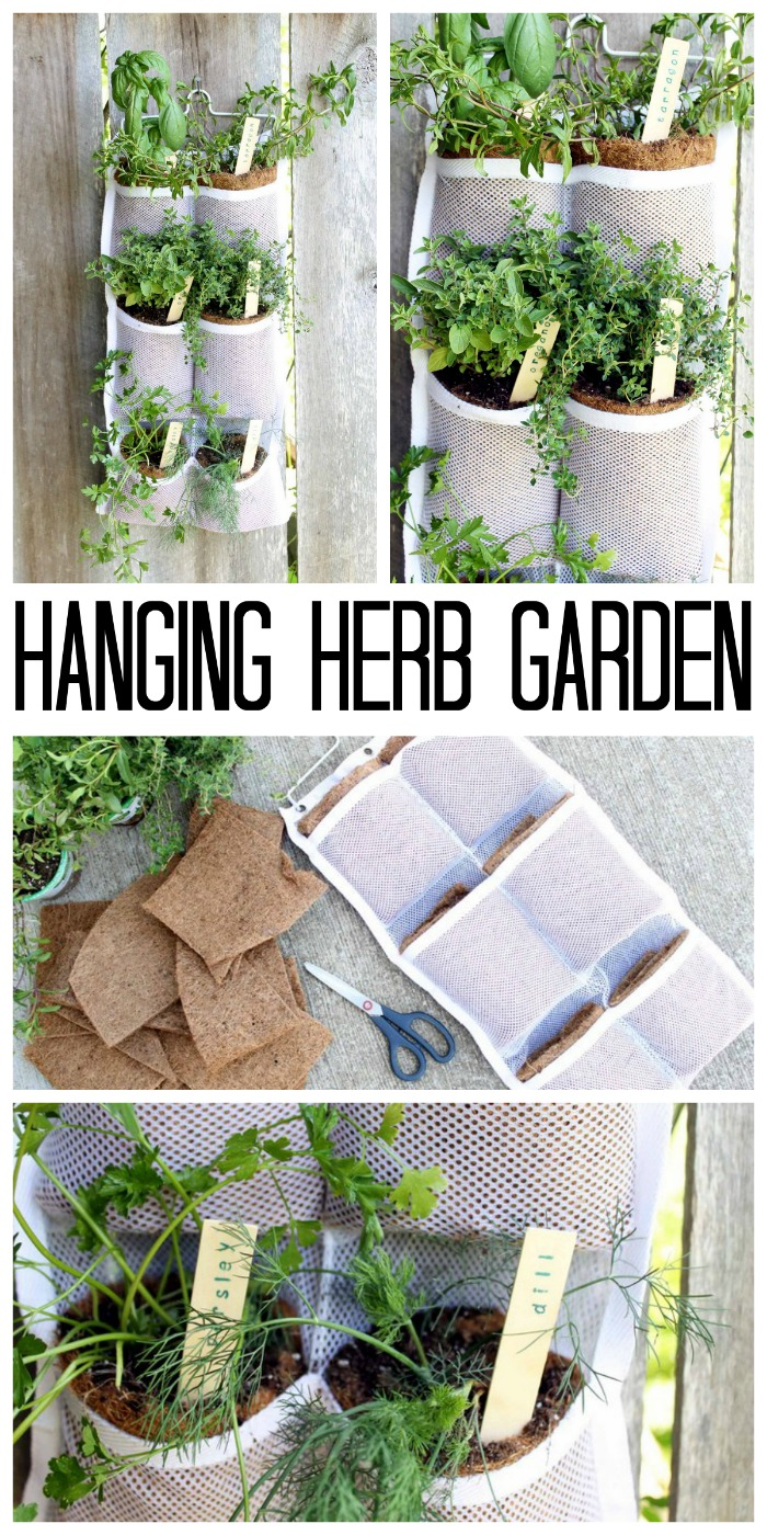 Hanging Herb Garden: Make Your Own This Summer