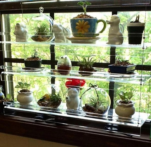 Kitchen Window Plant Shelf: A Very Nice Kitchen Window Display From Lora. Thank You
