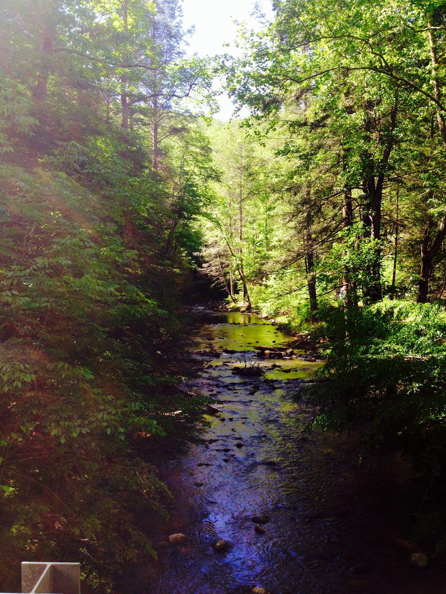 Paint Creek, Greeneville, TN