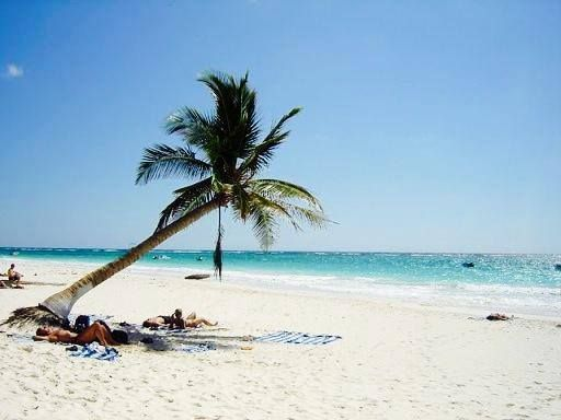 "Today is #TravelTuesday and this is ""Playa Paraíso"" is a true paradise in the Riviera Maya. This is a beach that has been cited among the most beautiful in the world in numerous magazines and travel channels. It is framed by ancient Mayan ruins of Tulum, which are located just 1 km away."