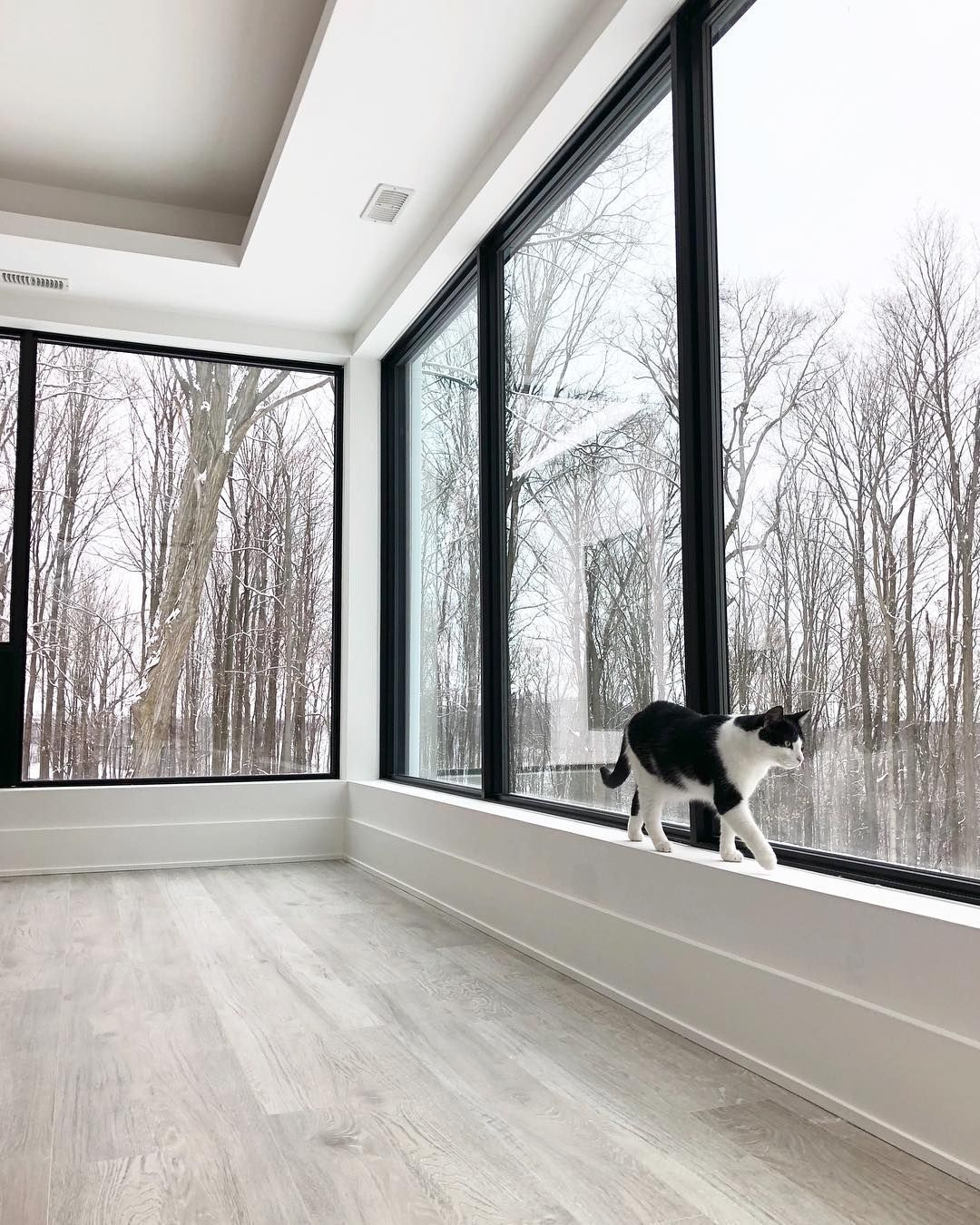 """A House We Built On Instagram: """"Chai Likes To Stalk These"""