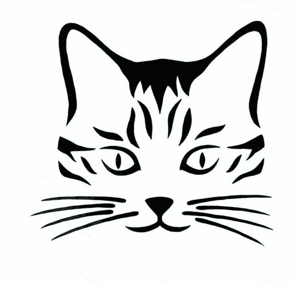 Sticker Décoration Chaton Chat Curieux regardant en Arrière 10x10 cm à 30x40 cm