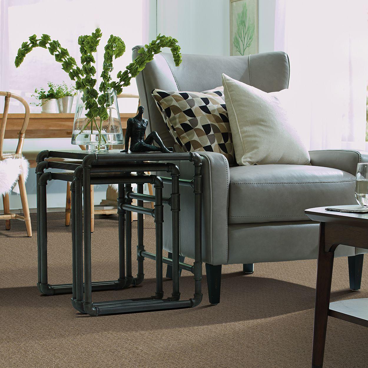 Tigressa Carpet in the style Laguna Flooring store