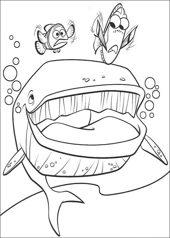 Finding Nemo Coloring Pages Bing Images Finding Nemo Coloring Pages Whale Coloring Pages Nemo Coloring Pages