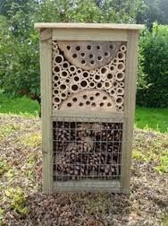 Bug Hotels For Kids Google Search