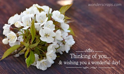 Thinking of you and wishing you a wonderful day ...