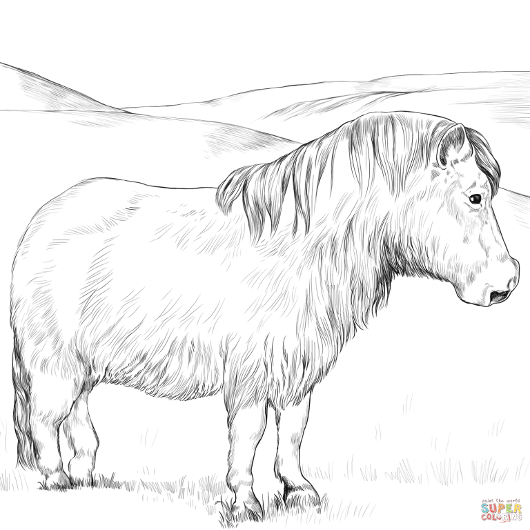 Free Printable Coloring Pages Pertaining To Welsh Pony Coloring Pages Free Download Horse Coloring Pages Horse Coloring Books Horse Coloring