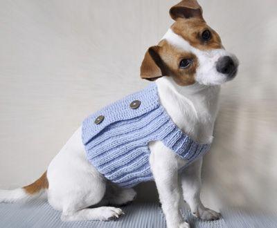 вязаная одежда для собак видео одежда для собак куртка для
