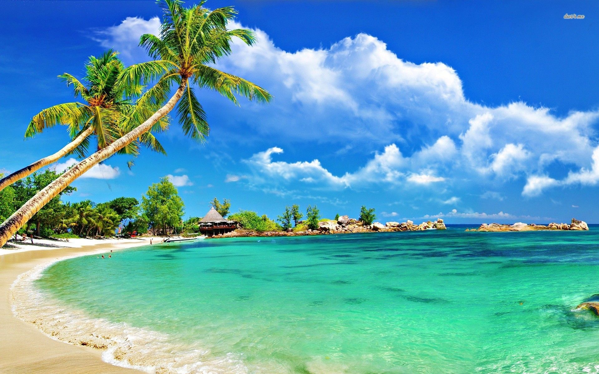 Tropical Beach Wallpaper Wide #mYt