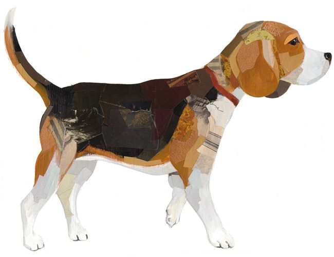 Portrait Of Cooper By Darren Booth Dogs Beagle Art Dog
