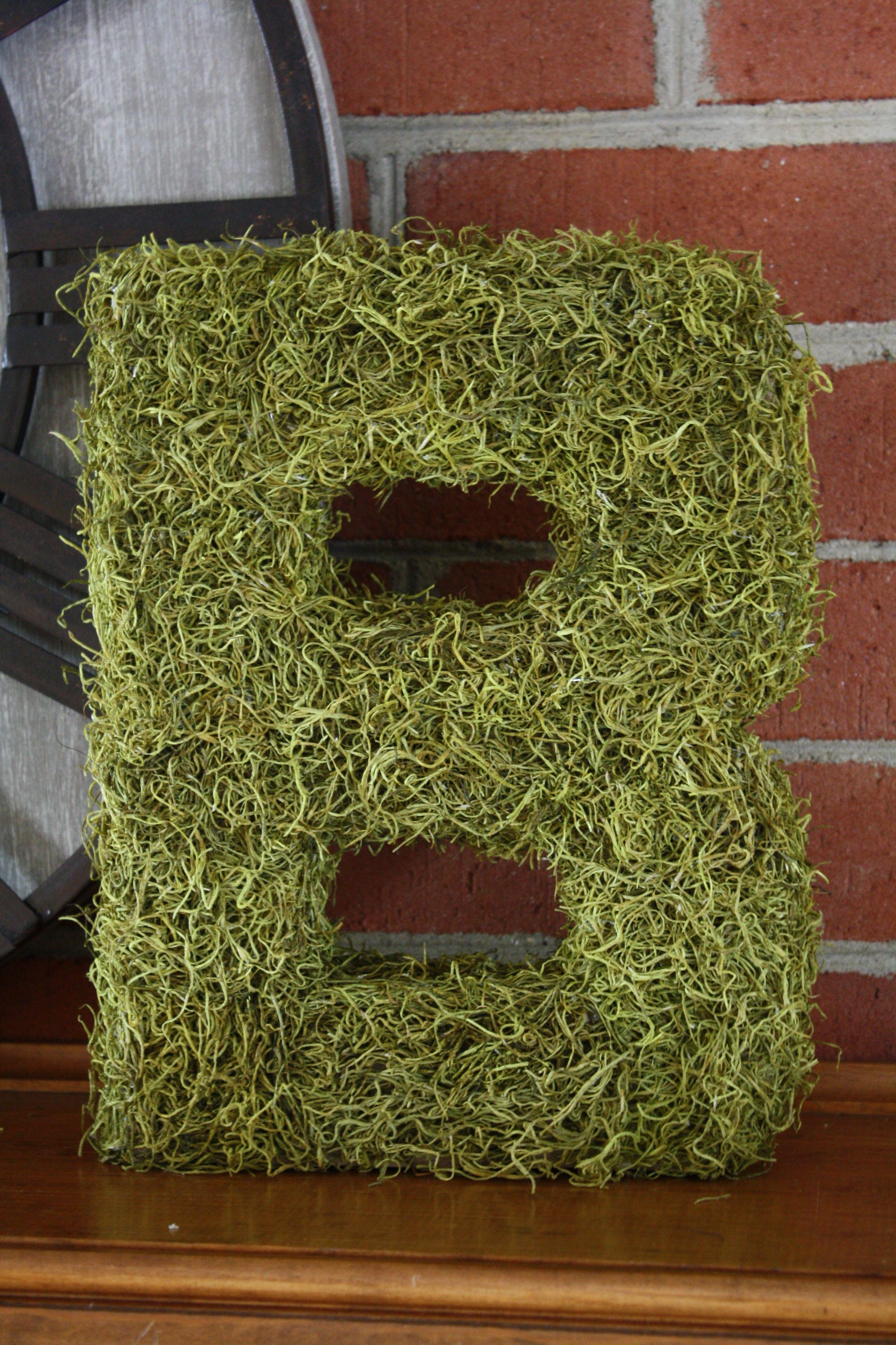 Spanish moss covered block letter