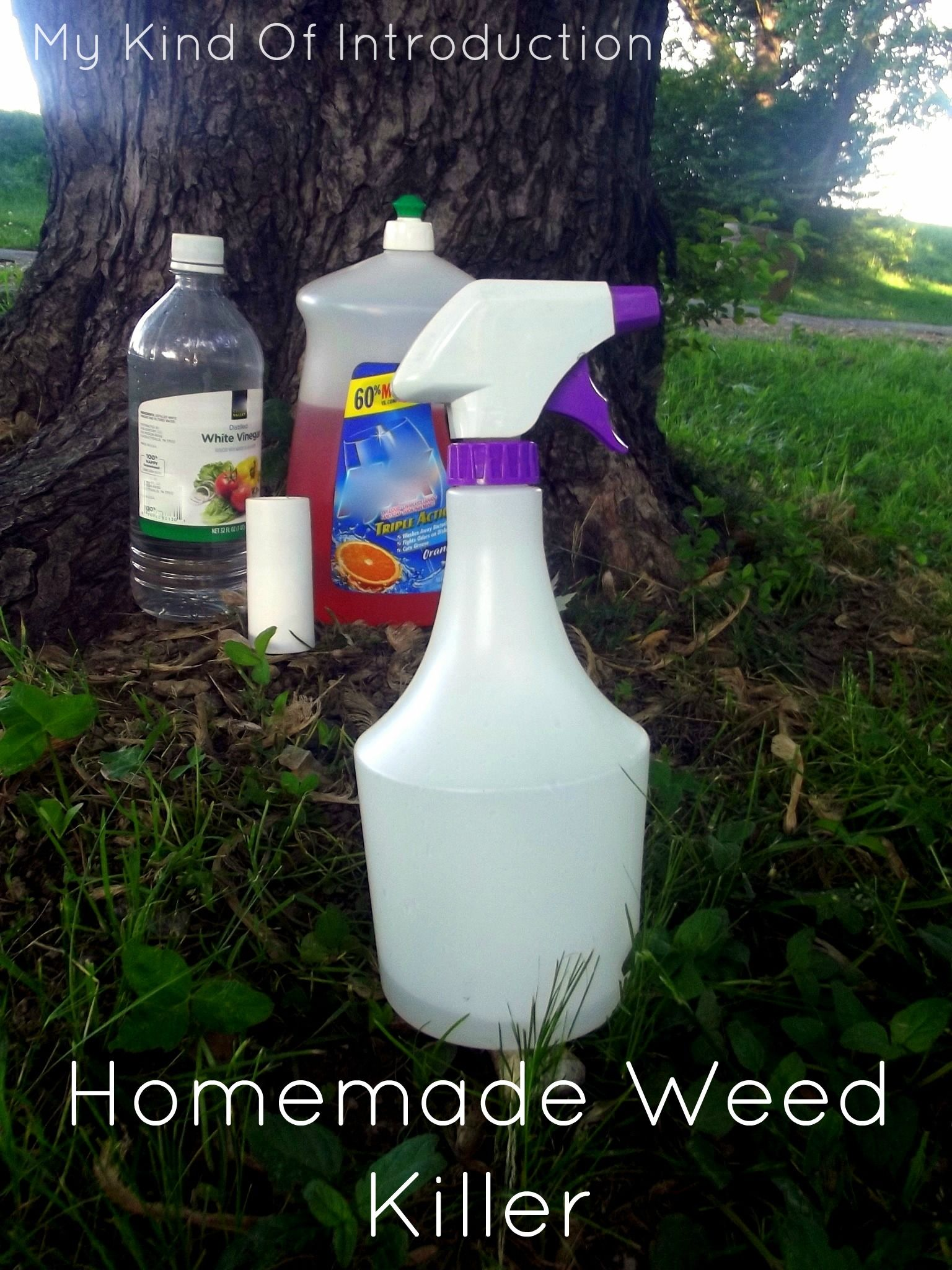 Homemade Weed Killer 1 Gallon Of White Vinegar Cup Salt Liquid Dish Soap Any Brand Empty Spray Bottle A Few Other Tricks With Just And Water For