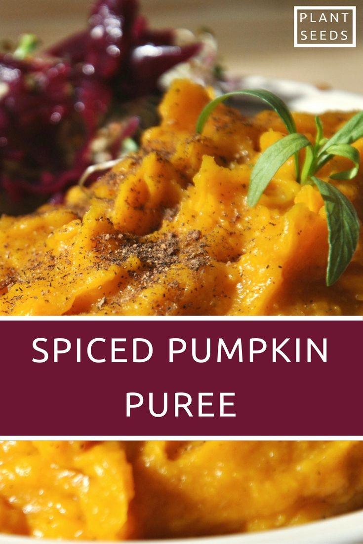 Skin-healing spiced pumpkin puree (vegan, whole food, gluten-free, no nightshades)
