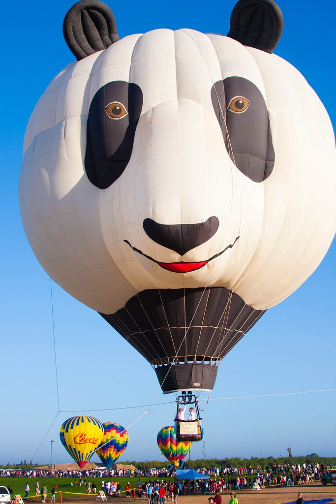 The cute panda hot air balloon ^_^ @ Ripon, California