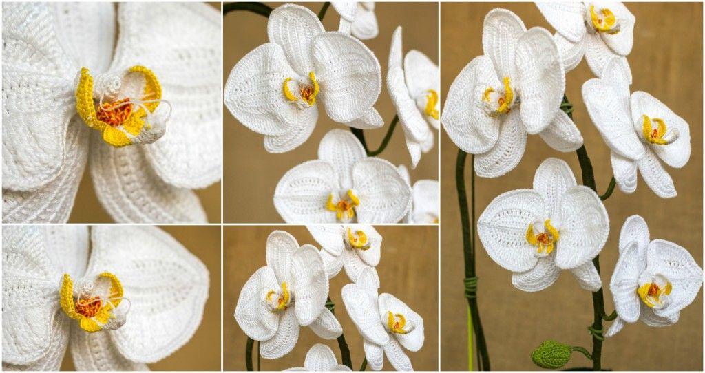 Crochet an orchid met video crochet motif pinterest orchid crochet an orchid met video ccuart Gallery