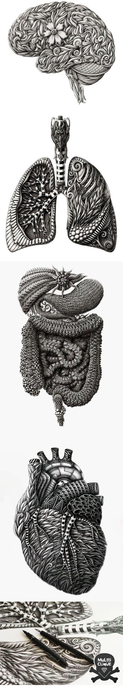 ANATOMIA TAMBÉM PODE SER ARTE | Inspiração | Pinterest | Anatomía ...