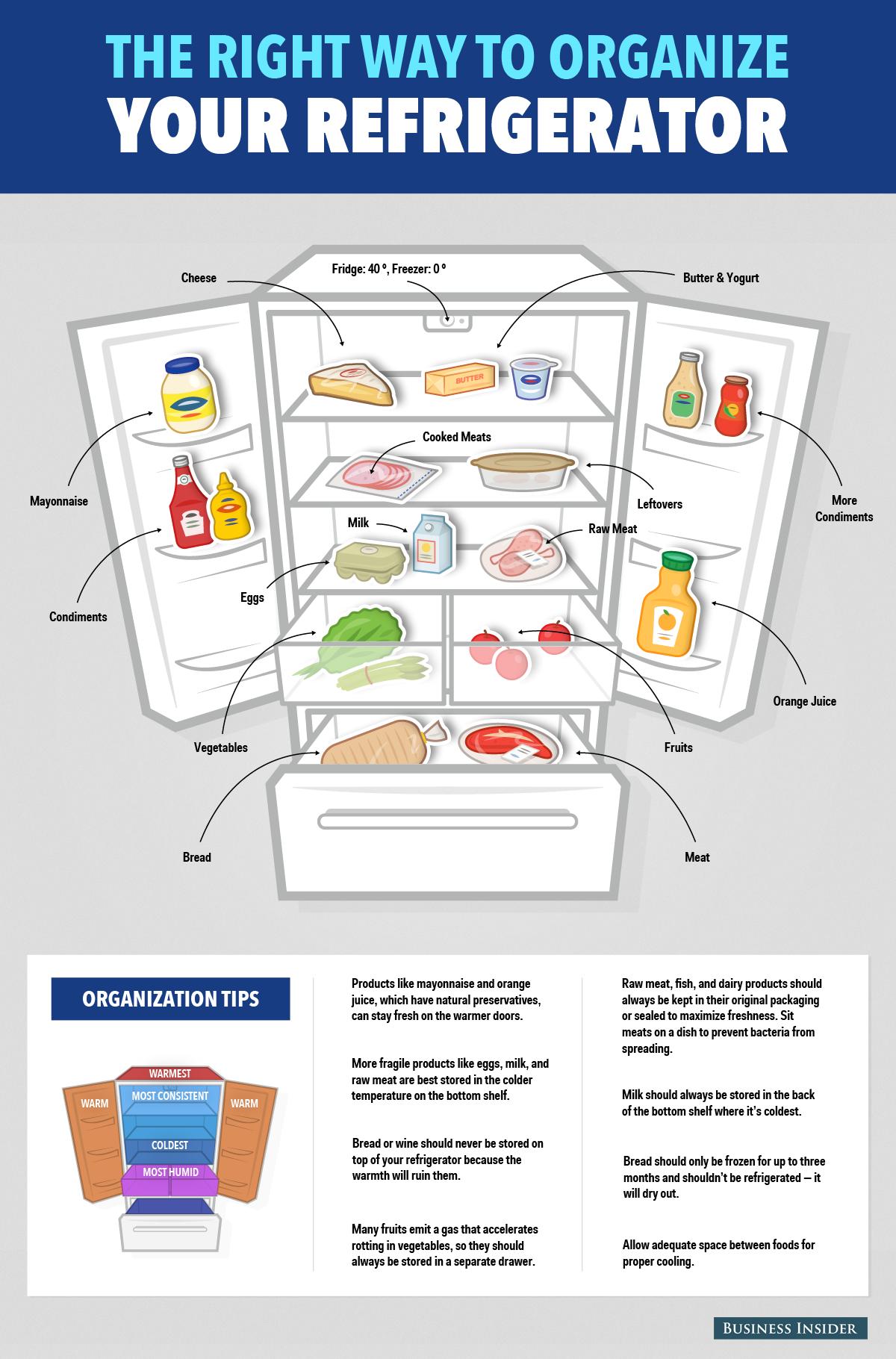 How To Organize Your Fridge Infographic Imgur Refrigerator