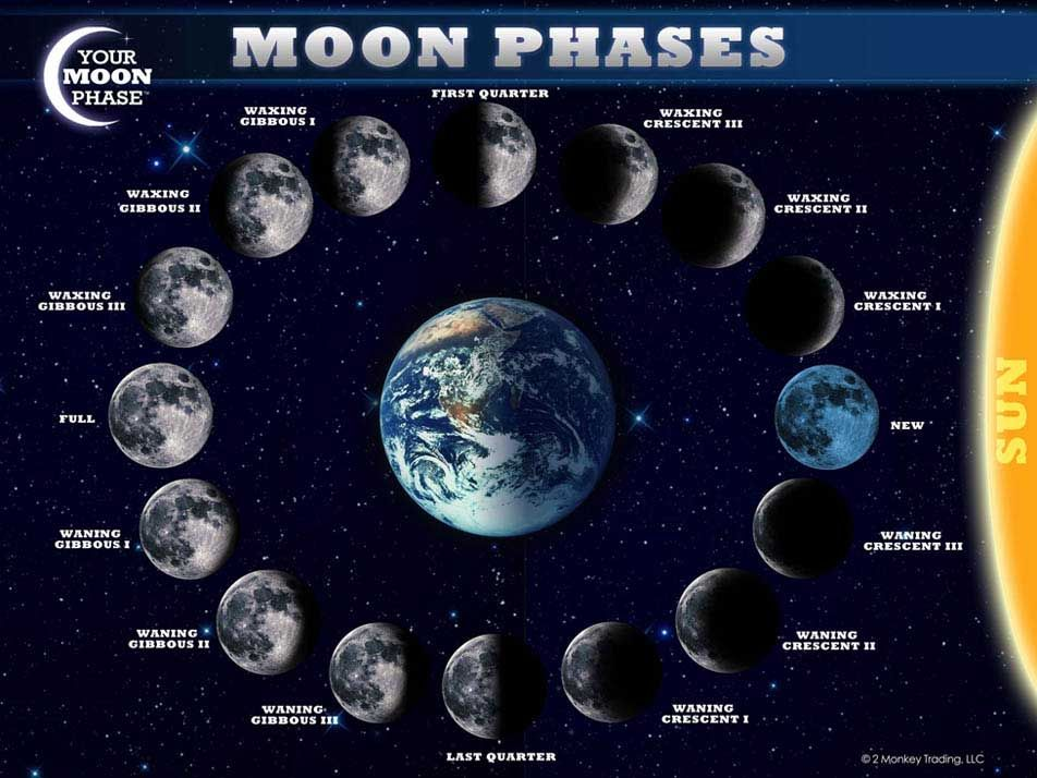 Is the moon really stationary why we cant see darkside 12160 the cool science dad learn the moon phases sciox Image collections