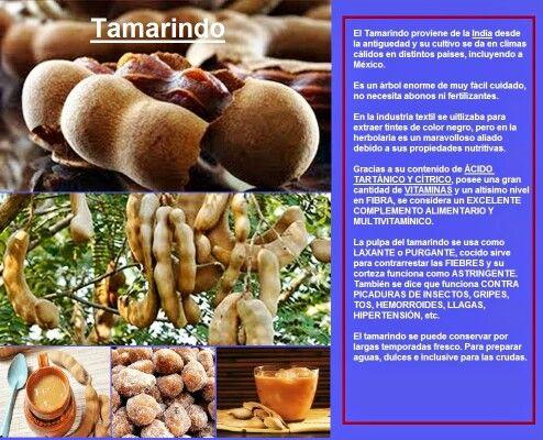 El Tamarindo