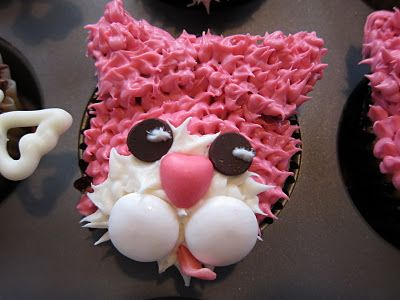 Kitty Cat Cupcakes | cupcakes after college