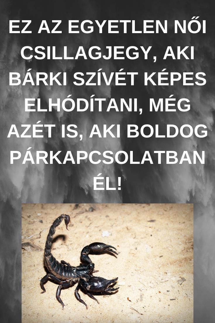 Skorpió - Vízöntő párhoroszkóp