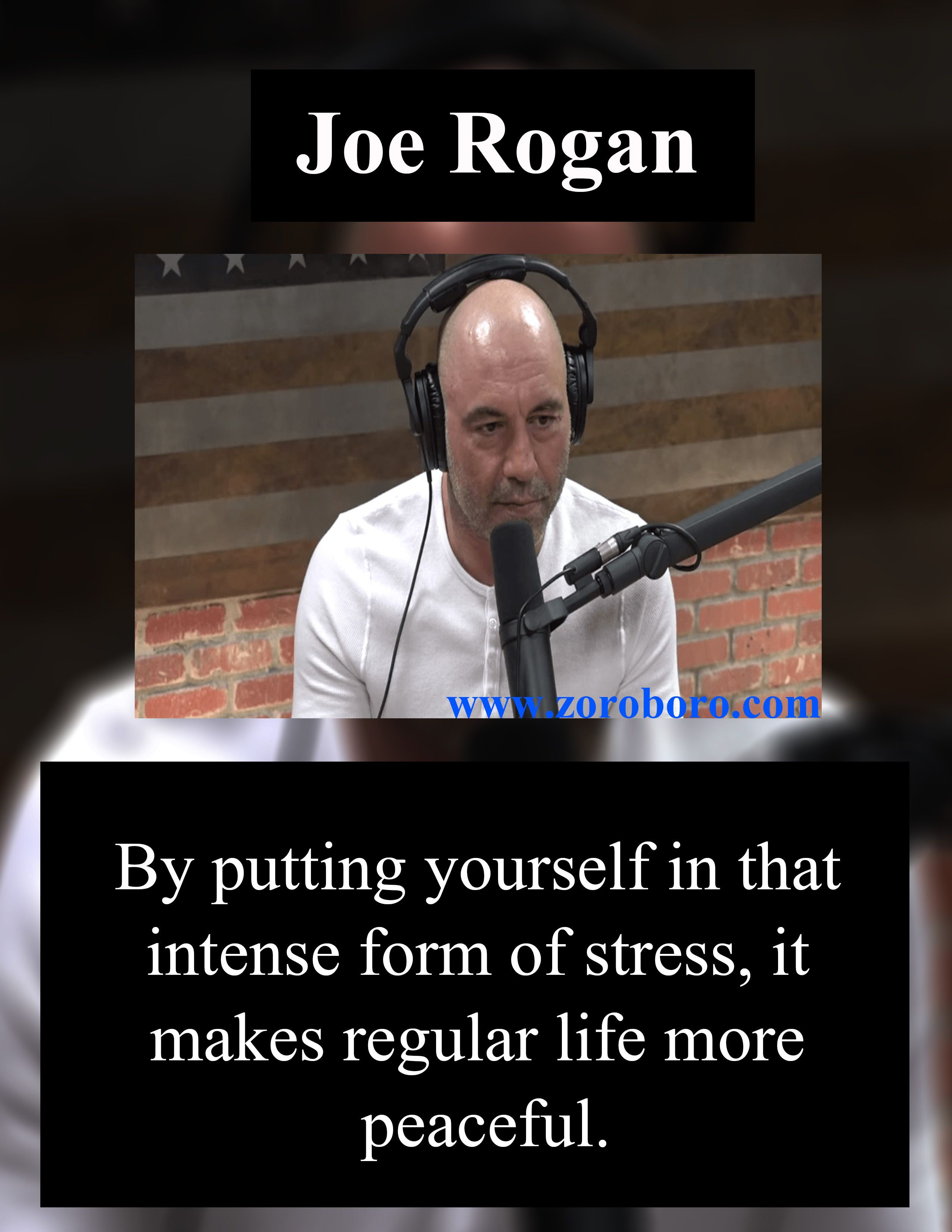 Joe Rogan Quotes Joe Rogan Podcast Quotes On Success Life Joe Rogan Inspirational Thoughts In 2020 Joe Rogan Quotes Success Quotes Inspirational Thoughts