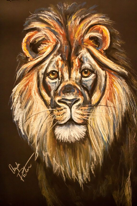 Original Chalk Pastel Lion Drawing The King By Angelaporterart