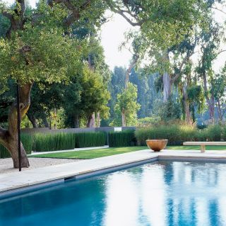 Contemporary pool and jim jennings in hillsborough california dat grass gardens party for Hillsborough swimming pool prices
