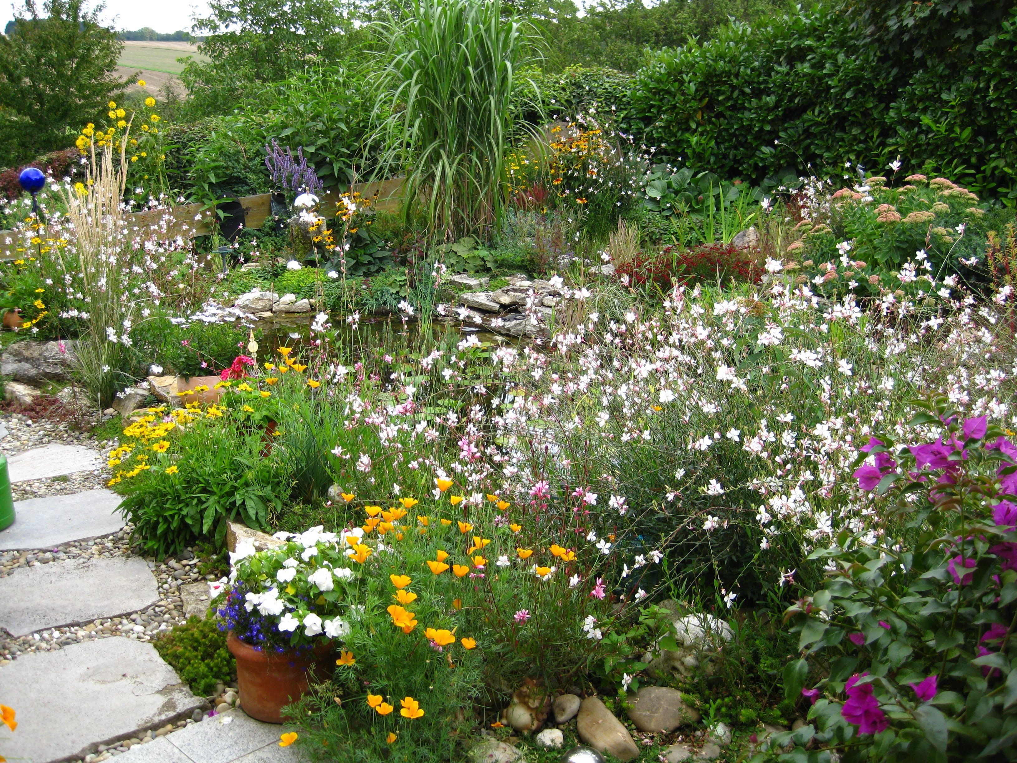 Gewaltig Gartenteich Bildergalerie Referenz Von Üppige Teichrandbepflanzung #teichrand#teich#stauden