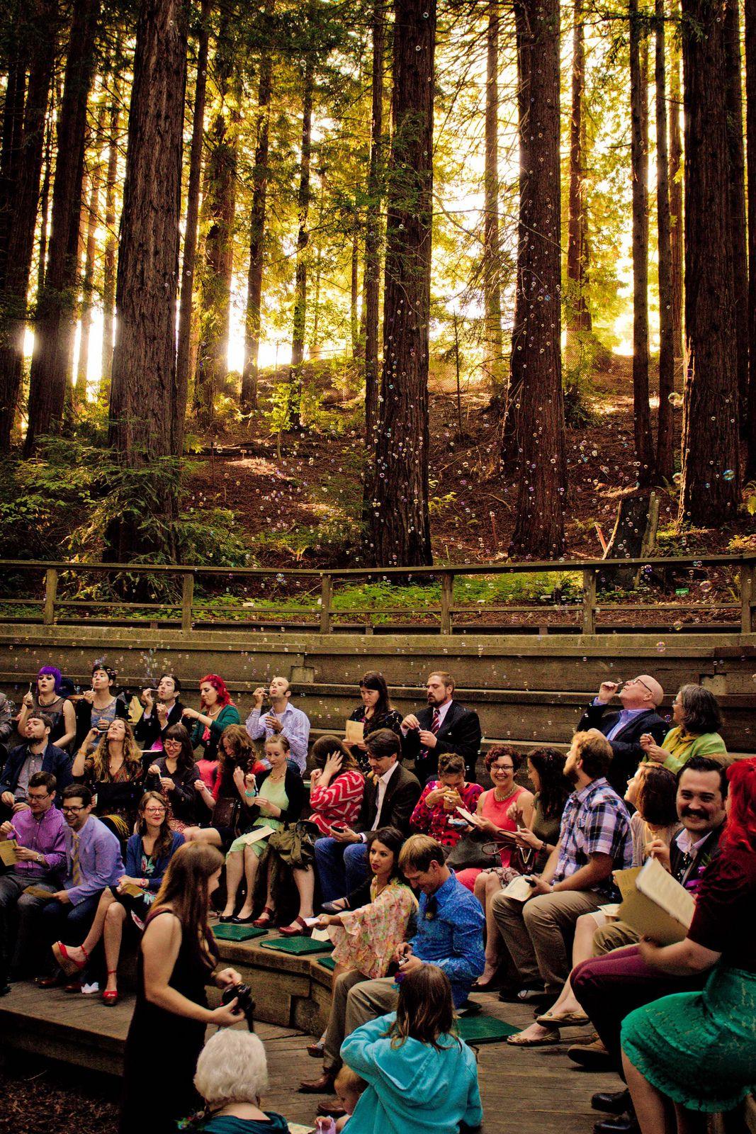Martha & Daniel\'s low-impact redwoods wedding (with many pretzels ...