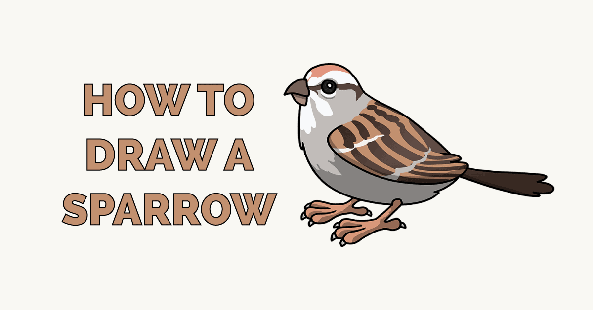 How to Draw a Sparrow - Really Easy Drawing Tutorial