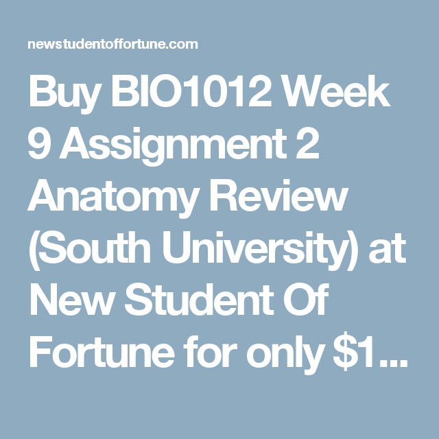 Buy assignment review