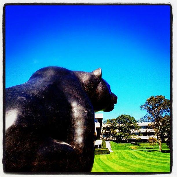 a91a1b896c9b74b58a5532cbd8e7e5df - Donald M Kendall Sculpture Gardens At Pepsico