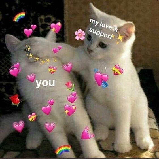 Pin By Seraphine On Mooood Cute Love Memes Love You Meme Cute Memes