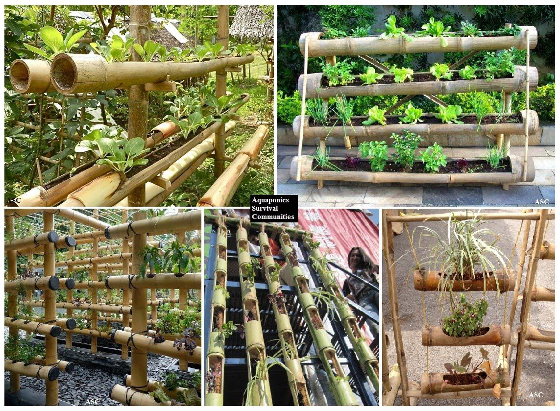Bamboo planters 101 the best thing about bamboo is that 39 s for Bamboo garden