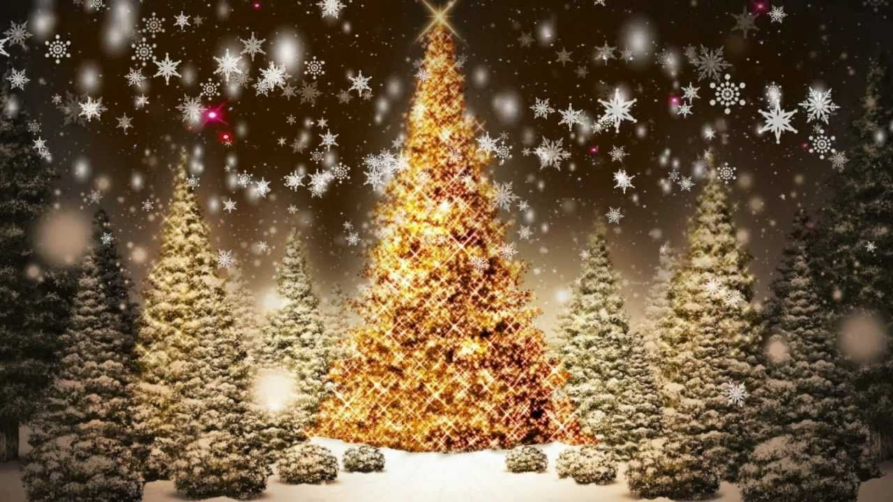 Snowflakes Falling Christmas Trees Motion Graphic Video Loop Free Download Christmas Facebook Cover Christmas Cover Photo Winter Facebook Covers