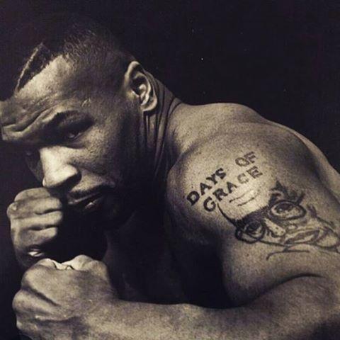 Mike Tyson Mike Tyson Tyson Boxer Tyson