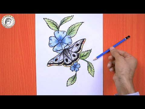 Pin By Arts Academy Hd On Drawing For Beginners Drawings Butterfly Drawing For Beginners