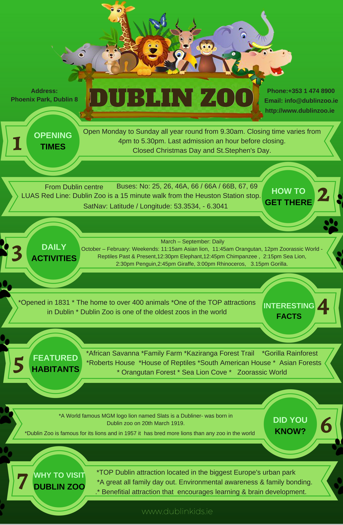 Dublin Zoo Is One Of The Most Popular Attractions In Dublin An All Ireland Learn All Top Info Dublin Zoo Prices Dublin Dublin Zoo Dublin Dublin Attractions
