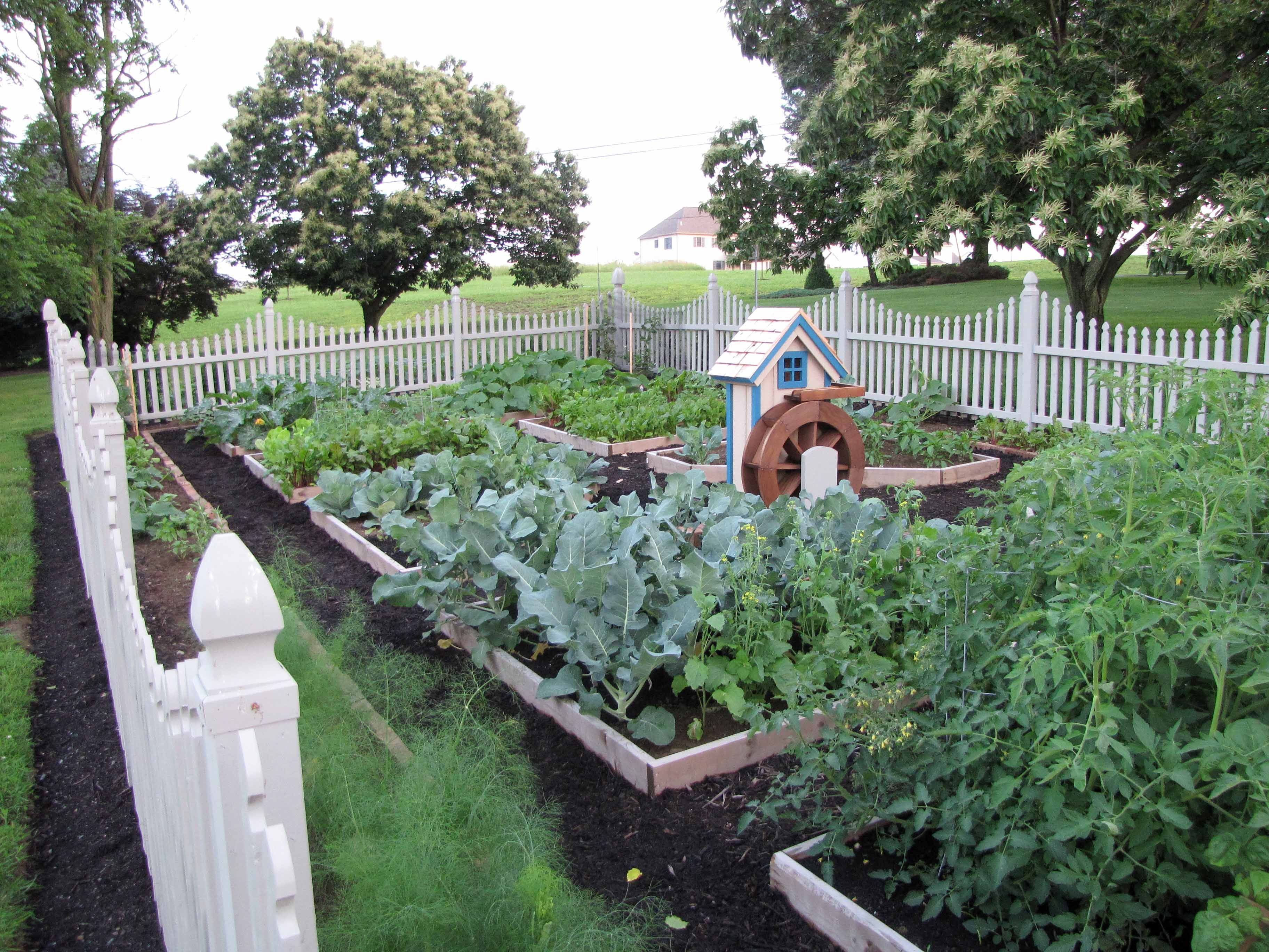 Raised Bed Vegetable Garden Design Plans ** Read More By Visiting The Link  On The Image.